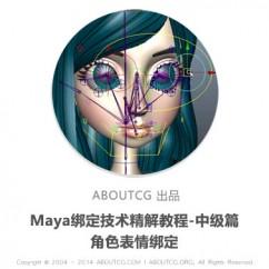 pro_mayafacerig_151204_01