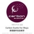 pro_Carbon-Scatte_060727_011