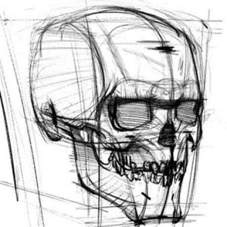 艺用人体解剖实用教学 的群组图标